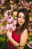 Beautiful girl posing to the photographer against the background of blooming pink trees. Spring. Sakura. Royalty Free Stock Photography