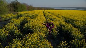 Beautiful girl is practicing yoga asana on a yellow flowering field. Aerial footage