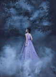Beautiful girl in a purple dress. Beautiful, young, brunette in a luxurious, purple, long dress. Fairy Photo. Creative toning. Queen walking in the fog stock image