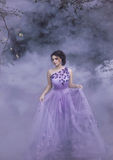 Beautiful girl in a purple dress. Beautiful, young, brunette in a luxurious, purple, long dress.  Fairy Photo. Creative toning. Queen walking in the fog Stock Photography
