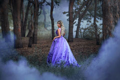 Beautiful girl in a purple dress. Beautiful, young, brunette in a luxurious, purple, long dress. Fairy Photo. Creative toning. Queen walks through the forest stock photography