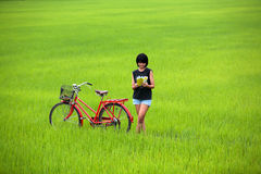 Beautiful girl reading a book with bike in paddy Stock Photos