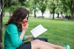 Beautiful girl reads book in a park Royalty Free Stock Image
