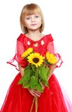 Beautiful girl in a red dress Stock Photography