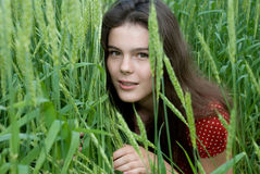Beautiful girl in red dress in green wheat field Royalty Free Stock Photos