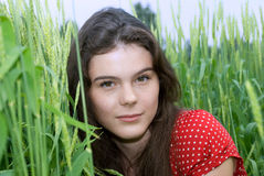 Beautiful girl in red dress in green wheat field Stock Images
