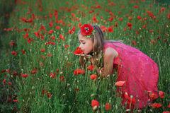 Beautiful girl in red dress walks at poppy field Royalty Free Stock Image