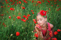 Beautiful girl in red dress walks at poppy field.  Royalty Free Stock Image