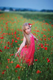Beautiful girl in red dress walks at poppy field.  Stock Photography