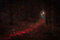 Beautiful Girl with red hair in blue dress passing trough dark forest passage with red petals falling around stock photos