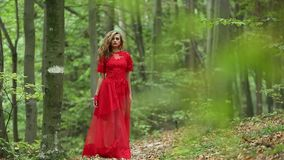 Beautiful Girl Walking In Forest stock video