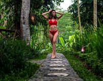 Beautiful girl in red swimsuit posing in tropical location with green trees. Young sports model in bikini with perfect royalty free stock photo
