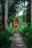 Beautiful girl in red swimsuit posing in tropical location with green trees. Young sports model in bikini with perfect stock photo