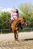 Beautiful girl riding a  purebred horse Royalty Free Stock Image