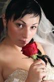 Beautiful girl with a rose Stock Photos