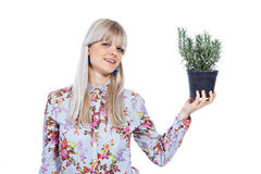 Beautiful girl with a rosemary plant. Beautiful blond girl holding fragrant potherb isolated on white background Royalty Free Stock Image