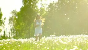Beautiful girl running, having fun on dandelion field in summer day in sun sunset. Freedom health happiness. Happy young. Woman in field outside. Beauty girl stock video