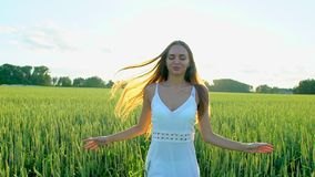 Beautiful girl running having fun on wheat field in sunset. Freedom, health, happiness concept. Happy young woman in. Field. Beauty girl with long hair enjoying stock footage