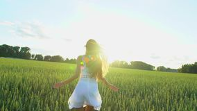Beautiful girl running having fun on wheat field in sunset. Freedom, health, happiness concept. Happy young woman in. Field. Beauty girl with long hair enjoying stock video footage