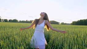 Beautiful girl running having fun on wheat field in sunset. Freedom, health, happiness concept. Happy young woman in stock video
