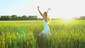 Beautiful girl running having fun on wheat field in sunset. Freedom, health, happiness concept. Happy young woman in. Field. Beauty girl with long hair enjoying stock video