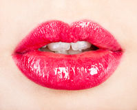 A beautiful girl's lips Royalty Free Stock Photos