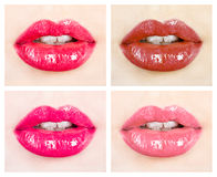 A beautiful girl's lips Royalty Free Stock Image