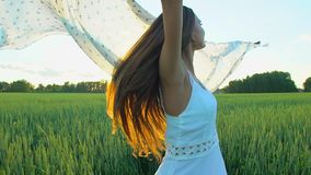Beautiful girl with scarf flying in wind running on wheat field in sunset. Freedom beayty health happiness concept. Happy young woman in field with long hair stock video