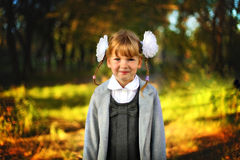 Beautiful girl schoolgirl Royalty Free Stock Images
