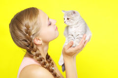 Beautiful girl with Scottish kitten Stock Images
