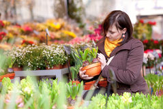 Beautiful girl selecting flowers Stock Photo