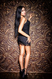 Beautiful girl in a sexy black dress Stock Photography