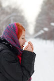 Beautiful girl in shawl warms hands outdoor Stock Photography