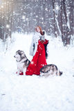 Beautiful girl in sheepskin coat with the dogs. Royalty Free Stock Images
