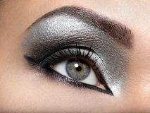 Beautiful girl with the silver  makeup of eyes. Fashion woman portrait. Closeup shot of female eye Stock Images