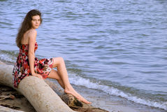 Beautiful girl sit on tree over sea Royalty Free Stock Photo