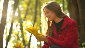 Beautiful girl sits in the autumn forest and collects a bouquet of yellow maple leaves. Slow motion. Beautiful girl sits in the autumn forest and collects a stock footage