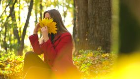 Beautiful girl sits in the autumn forest and collects a bouquet of yellow maple leaves. Weekend outside the city stock footage