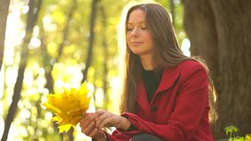 Beautiful girl sits in the autumn forest and collects a bouquet of yellow maple leaves. Weekend outside the city stock video footage