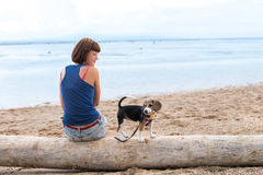 Beautiful girl sitting on the beach with a beagle dog puppy. Tropical island Bali, Indonesia. Stock Photography