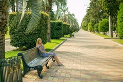 Beautiful girl sitting on the bench, the brown-haired woman in the striped dress, the trendy life style with your phone. A Sunny day in the Park Batumi Stock Image