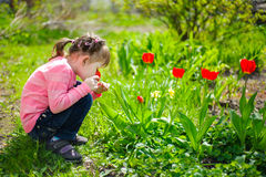 Beautiful girl sitting on his haunches and sniffing tulips on th Stock Photo