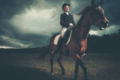 Beautiful girl sitting on a horse Royalty Free Stock Photography
