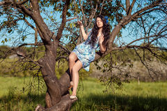 Beautiful girl sitting on a tree. Royalty Free Stock Photography