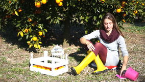 Beautiful girl sitting under the orange tree. And daydreaming on sunny autumn day stock video footage
