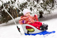 Beautiful girl in sled Royalty Free Stock Photos