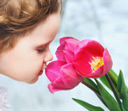 Girl smelling red tulips Royalty Free Stock Image