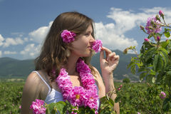 Beautiful girl smelling a rose in a rose field Royalty Free Stock Image