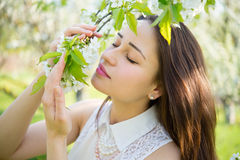 Beautiful girl smells blossoming branches Stock Photography