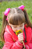 Beautiful Girl smells the flowers.  Royalty Free Stock Images